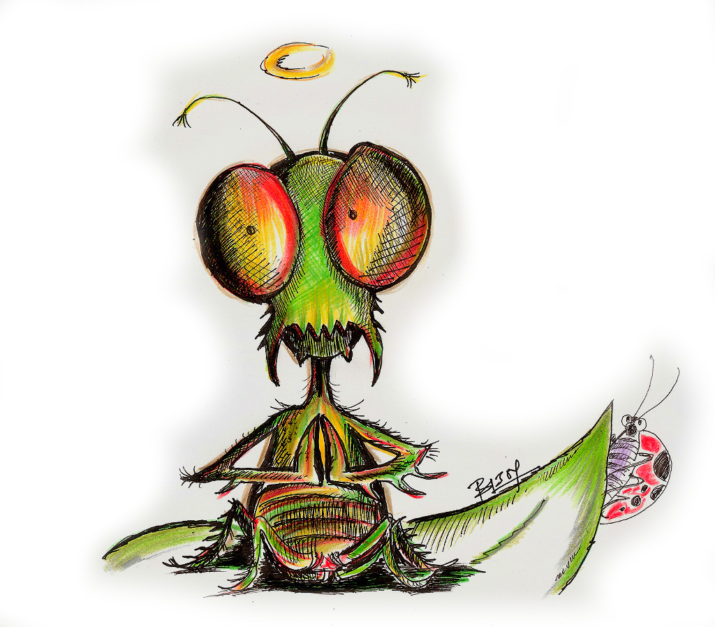 Manto the mantis, a dietarily troubled protagonist