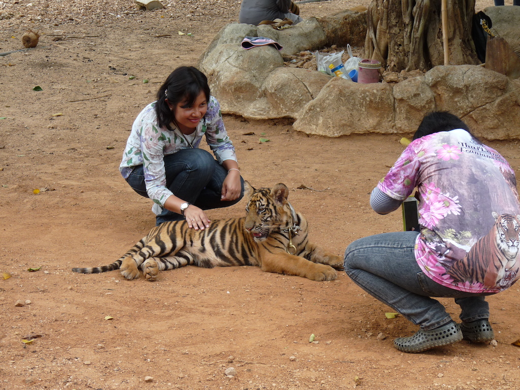A tourist poses with a tiger cub
