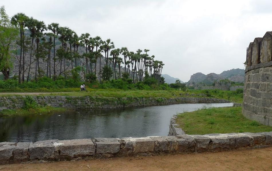The moat outside the Gingee Fort lined by a row of palmyra palms. Entry to the fort is restricted to ticket-holders.