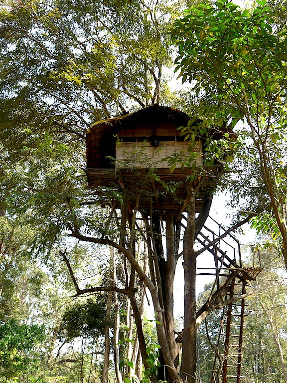 A tree house in Parambikulam