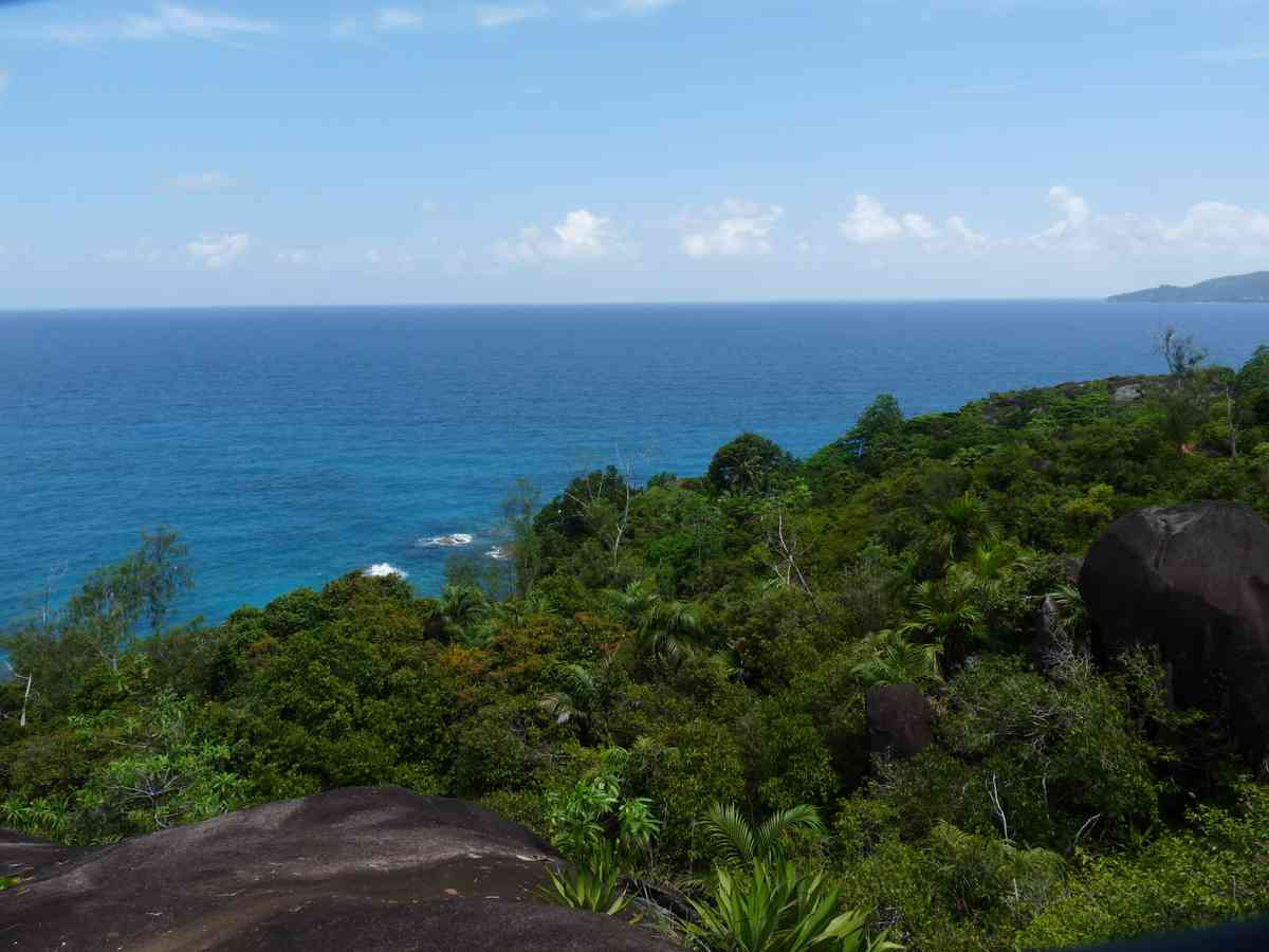 A view of the Indian Ocean from Seychelles. Black parrot